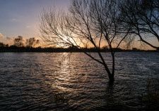 Sonnenuntergangsstimmung an der Weser