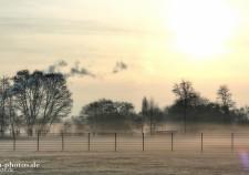 Frühnebel und Sonnenaufgang in der Pauliner Marsch