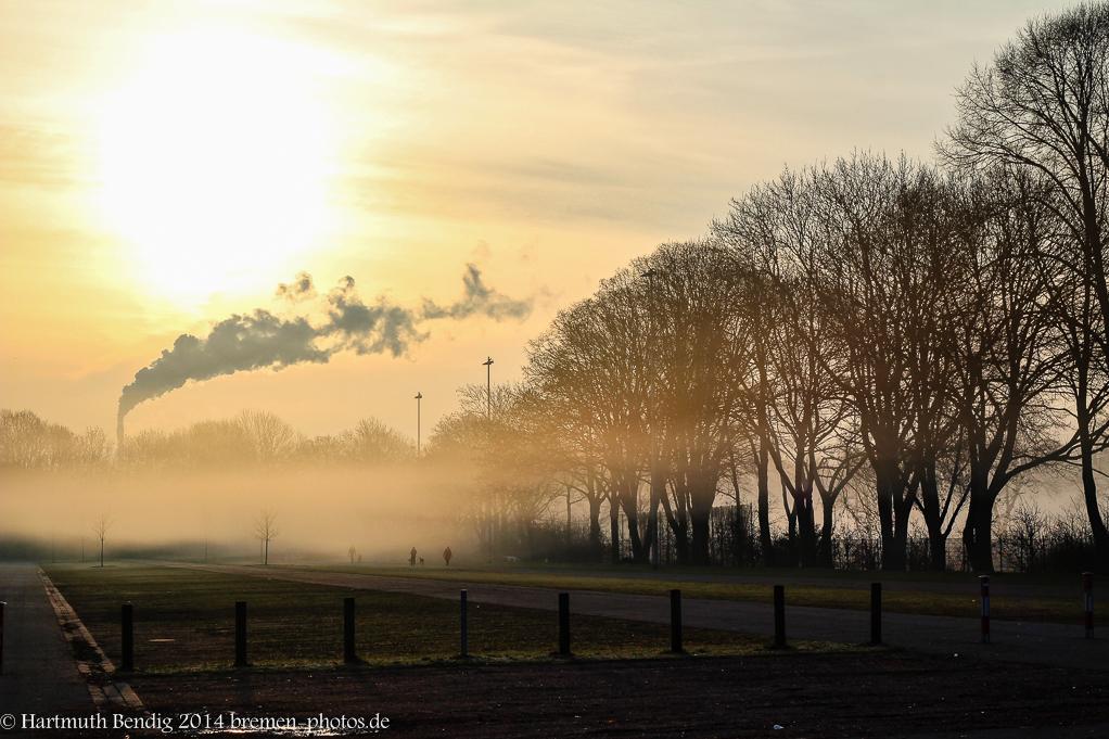 Sonnenaufgang und Morgenebelstimmung am Osterdeich