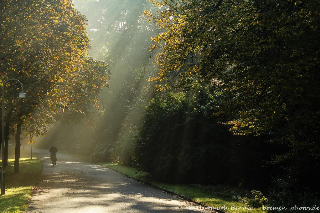 Morgenstimmung im Bremer Buergerpark