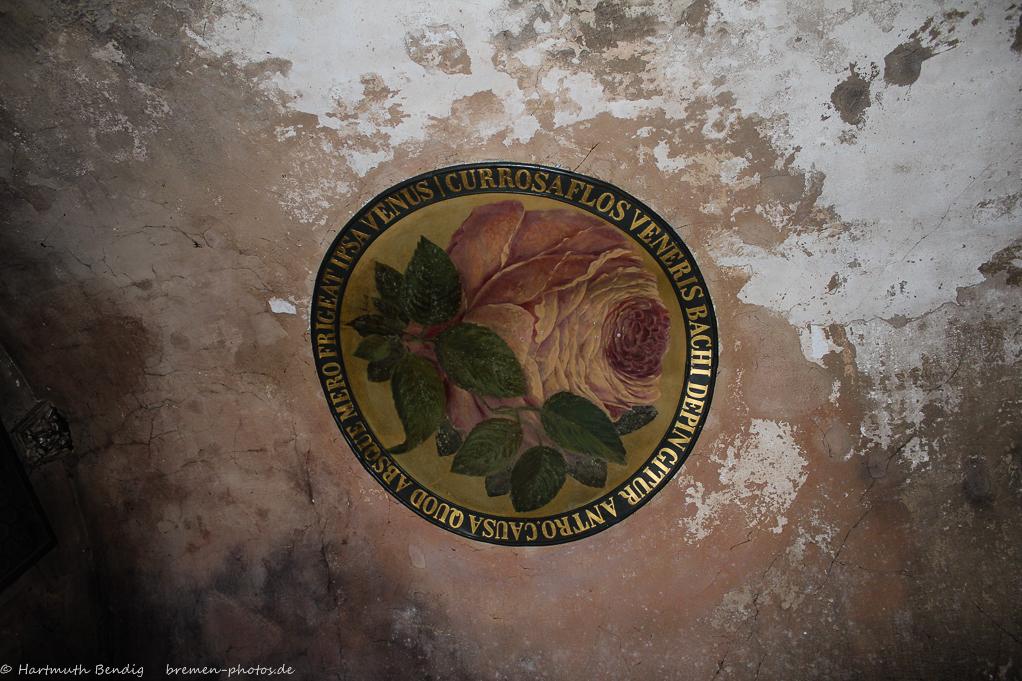Rosenplatte