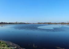 Die Borgfelder Wümmewiesen