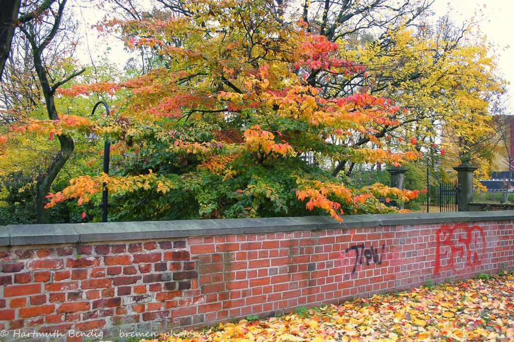 Mauer am Fockegarten
